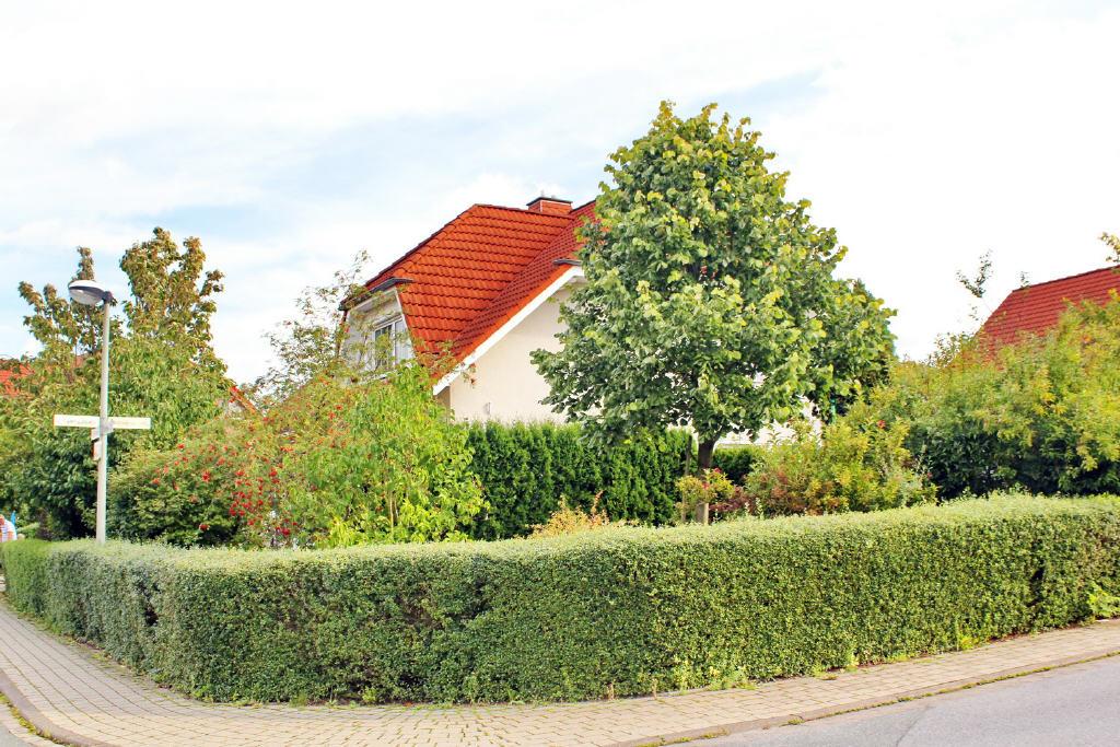 großer, eingefriedeter Garten (EG-Whg.)